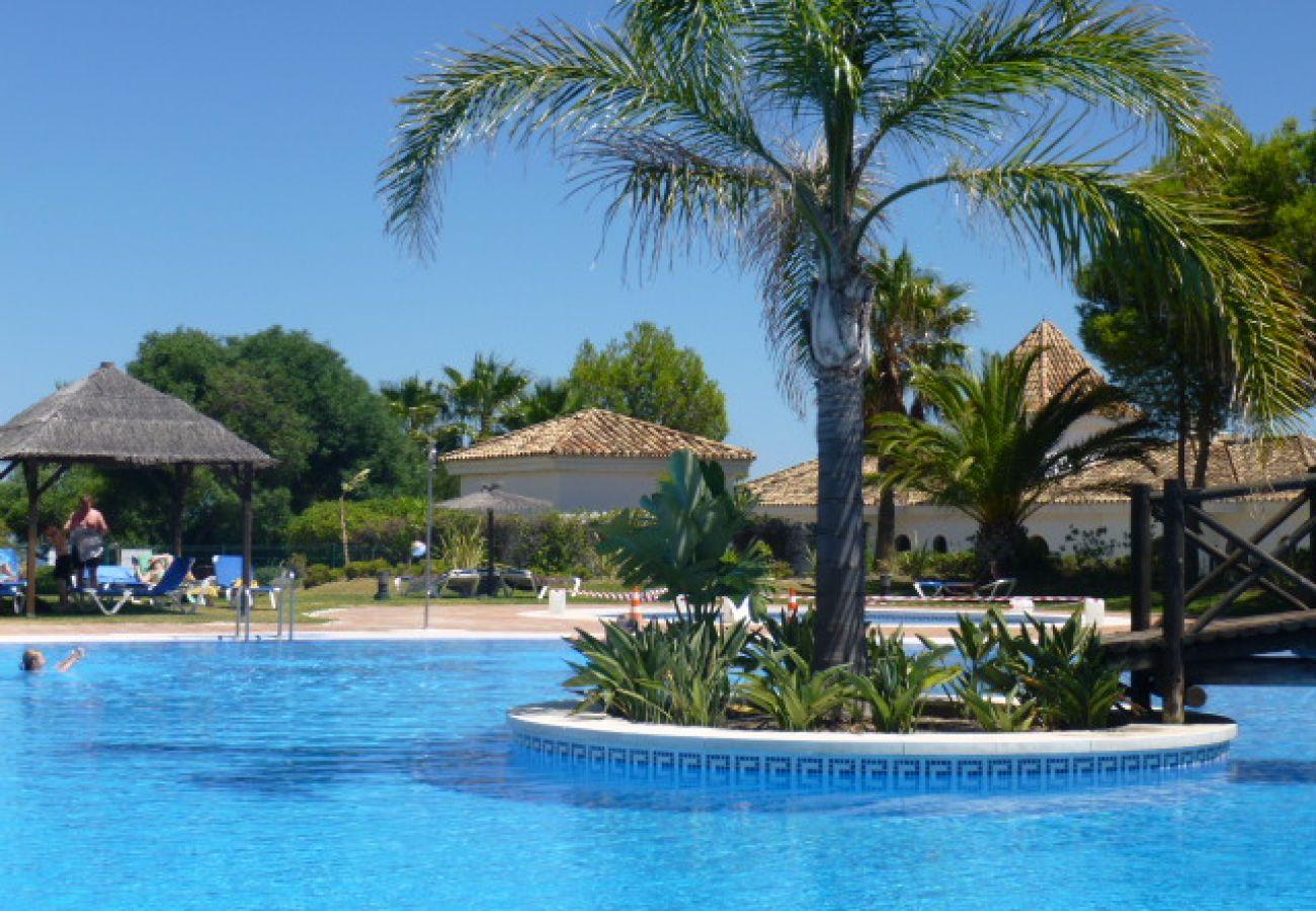 Zapholiday - 2099 - Alquiler apartamento Golf de La Duquesa, Costa del Sol - piscina