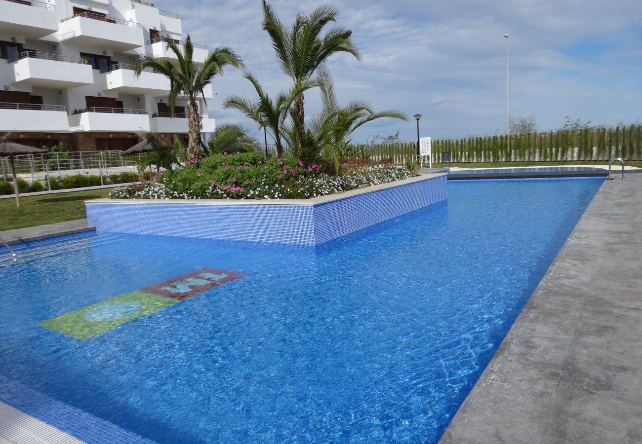 Zapholiday - 3056 - apartamento Terrazas de Campoamor, Costa Blanca - piscina